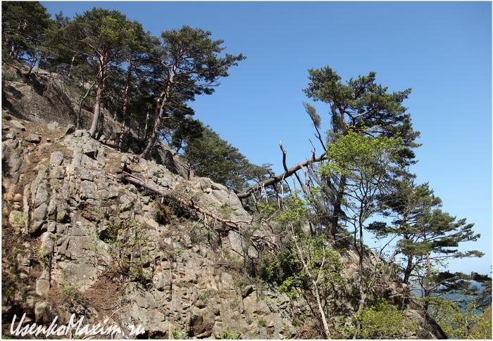 Полуостров Гамова. Скальные берега распадка речушки