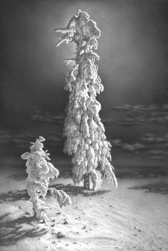 Гурам Доленджашвили. Лунная соната. На Сере диком. 71х48 Карандаш