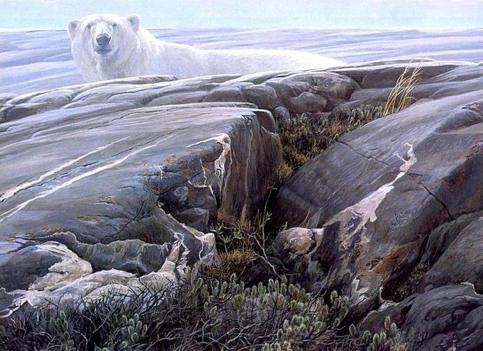 Robert Bateman. Анималистическая живопись. Полярный медведь
