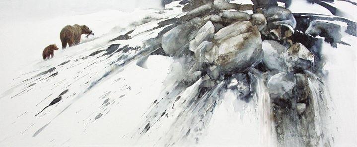 Morten E. Solberg. Животные акварелью. Третья акварель