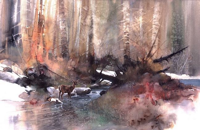 Morten E. Solberg. Животные акварелью. Woodland Stream
