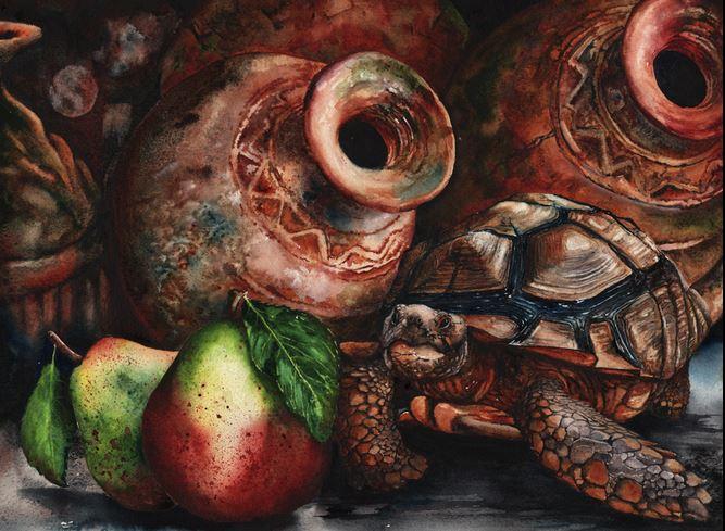Peter Williams. Анимализм в акварели. Груша и черепаха. 14х10 дюймов