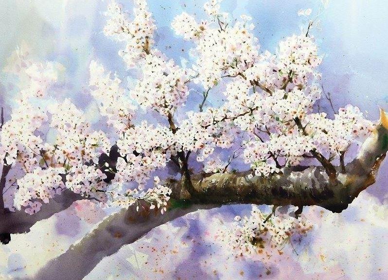 Корейский акварелист Shin Jong Sik. Цветы акварелью. Пятые