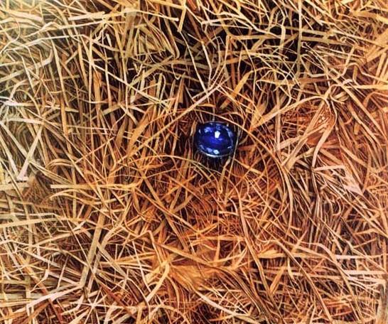 Козлов Петр. Драгоценность. 40х45 холст масло