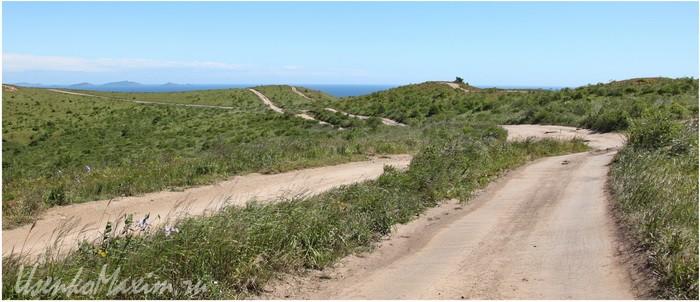Природное покрытие дорог полуострова Гамова