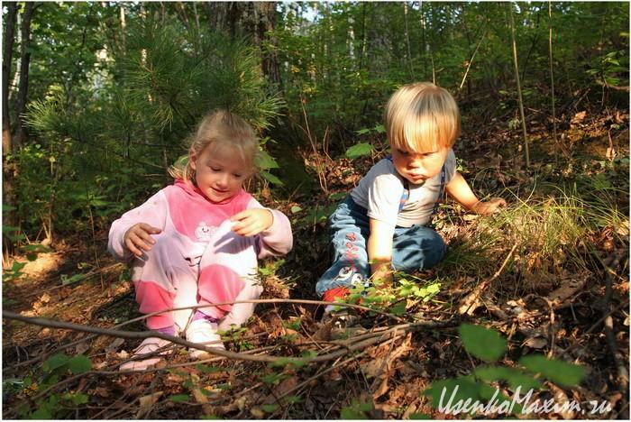 Хабаровск. Хехцир. Дети с удовольствием возятся в лесу