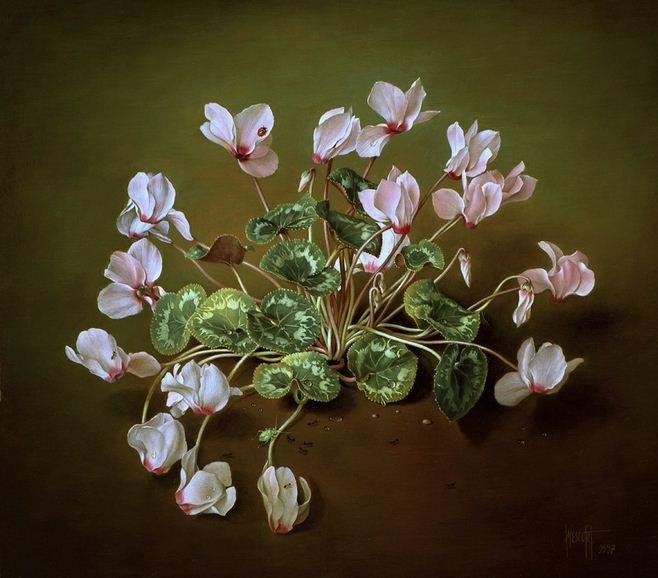 Художник Jose Escofet. Лесной розовый цикламен. 41х46 холст масло