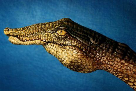 Krokodil.-Neobyichnoe-iskusstvo-Finger-painting