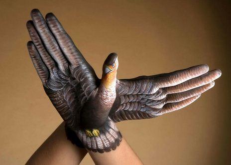 Popugay.-Neobyichnoe-iskusstvo-Finger-painting