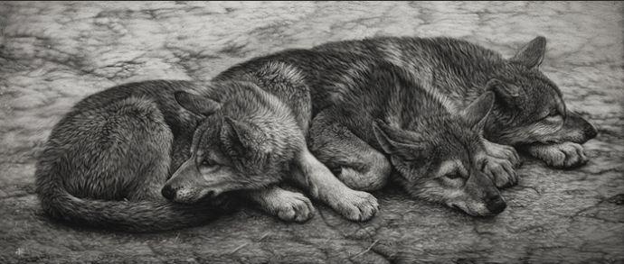 Художница Cristina Penescu. Граттаж Wolf Pups. 8x20 дюймов