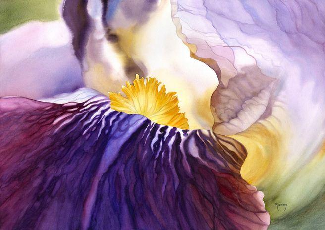 Hudozhnitsa-Marney-Ward.-Akvarel-Amethyst-Iris.-21x29-dyuymov