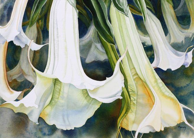 Hudozhnitsa-Marney-Ward.-Akvarel-Angels-Trumpets.-21x29-dyuymov