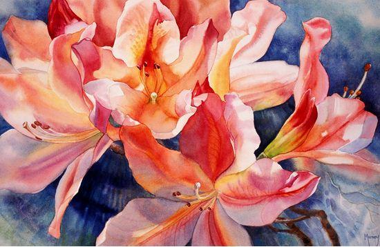 Hudozhnitsa-Marney-Ward.-Akvarel-Apricot-Azalea-II.-14x21-dyuymov
