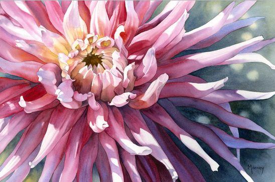 Hudozhnitsa-Marney-Ward.-Akvarel-Pink-Dahlia.-14x21-dyuymov