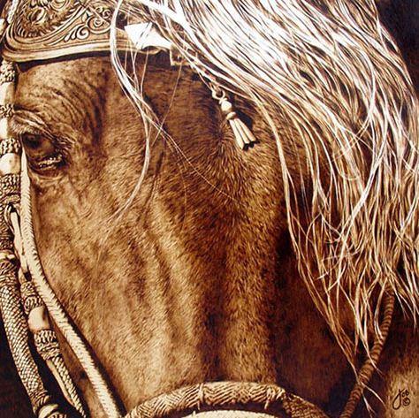Julie Bender. Пирография Peruvian Splendor. 16х16 дюймов. Клен