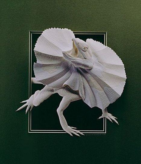 Skulptura-iz-bumagi-Calvin-Nicholls.-Animalistika-v-skulpture-desyataya