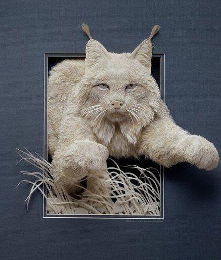 Skulptura-iz-bumagi-Calvin-Nicholls.-Animalistika-v-skulpture-pervaya