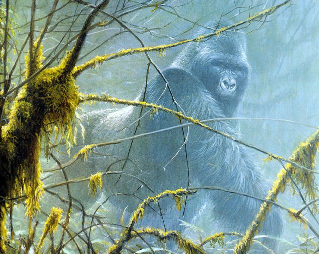 Robert Bateman. Анималистическая живопись. Горила