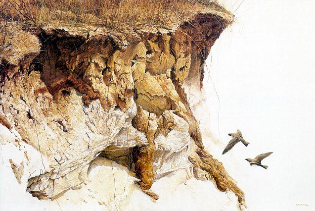 Robert Bateman. Анималистическая живопись. Картина девятая