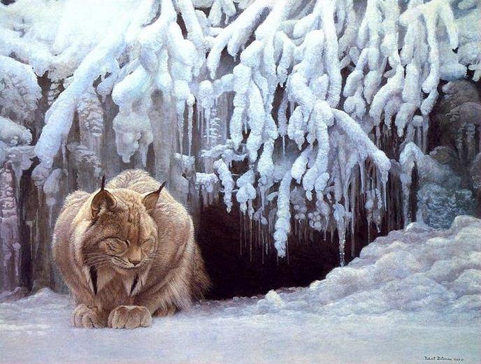 Robert Bateman. Анималистическая живопись. Картина первая