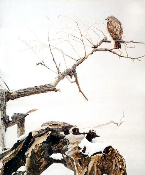 Robert Bateman. Анималистическая живопись. Картина седьмая