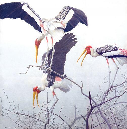 Robert Bateman. Анималистическая живопись. Картина шестая