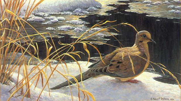 Robert Bateman. Анималистическая живопись. Картина третья
