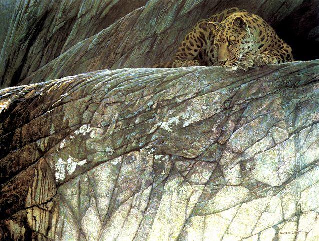 Robert Bateman. Анималистическая живопись. Леопард