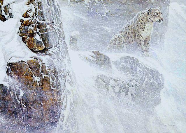Robert Bateman. Анималистическая живопись. Снежный барс