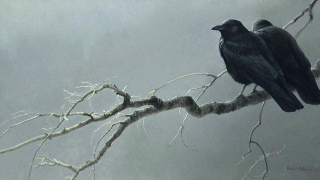 Robert Bateman. Анималистическая живопись. Вороны