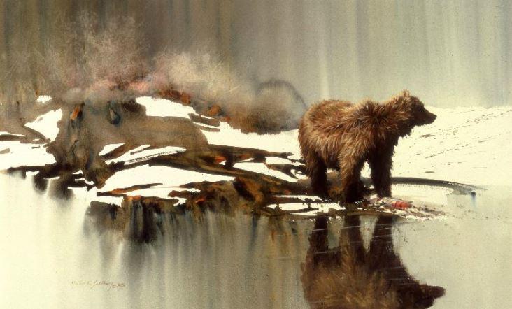 Morten E. Solberg. Животные акварелью. Bad Water Bear