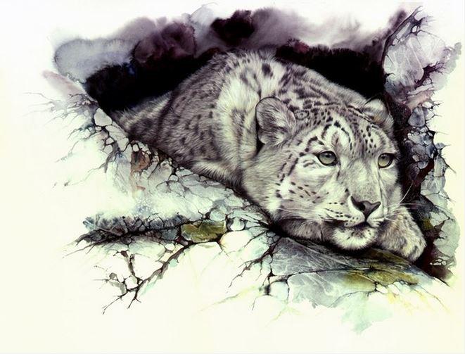 Peter Williams. ��������� � ��������. Elusive Nature. ������,��������, ������� ���������. 22x15 ������