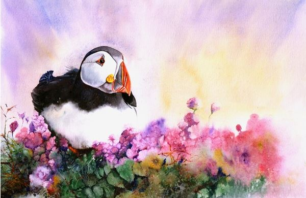 Peter Williams. ��������� � ��������. Puffin Paradise. ������,��������. 15x20 ������