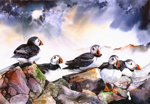Peter Williams. ��������� � ��������. Puffins. ������,��������. 22�15 ������